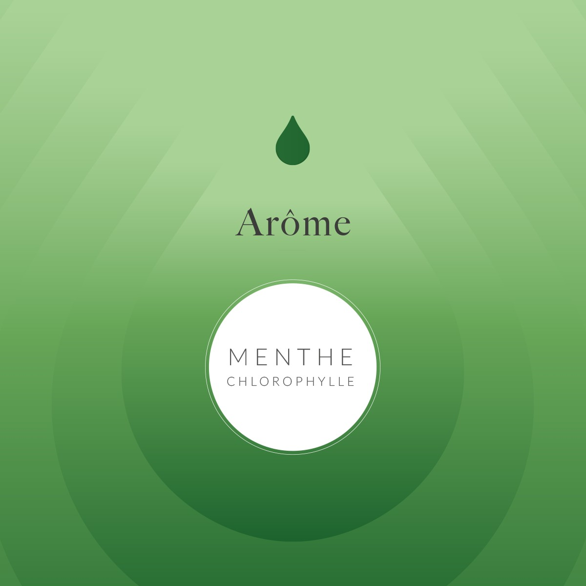 Arôme Alimentaire Menthe Chlorophylle
