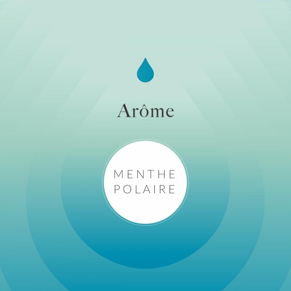 Arôme Alimentaire Menthe Fraiche