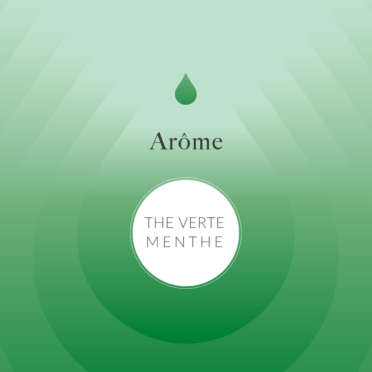 Thé vert menthe