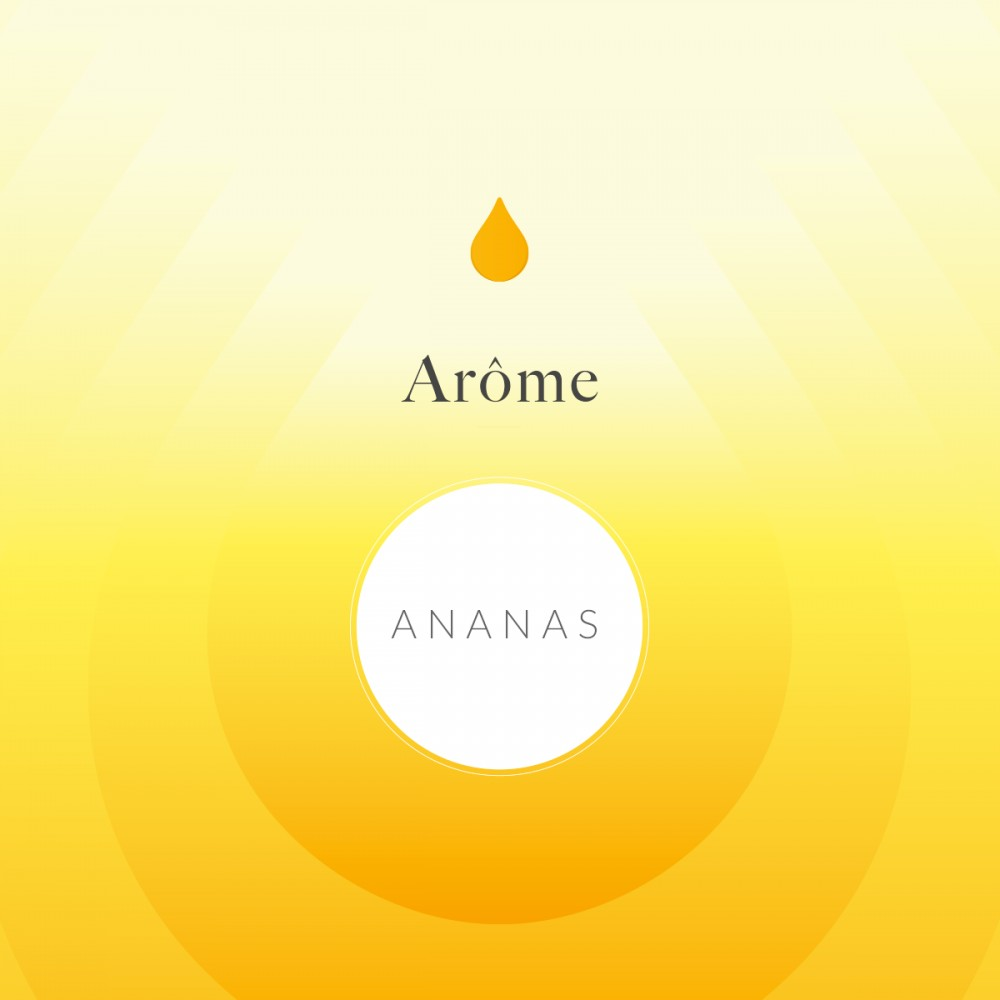 Arôme Alimentaire Ananas