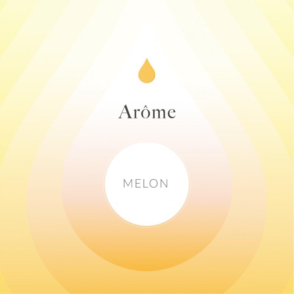 Arôme Alimentaire Melon