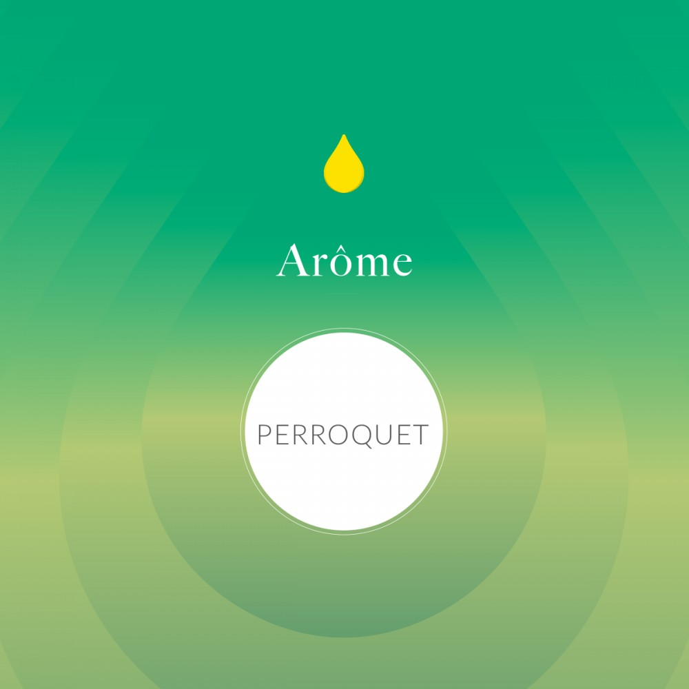 Arôme Alimentaire Perroquet