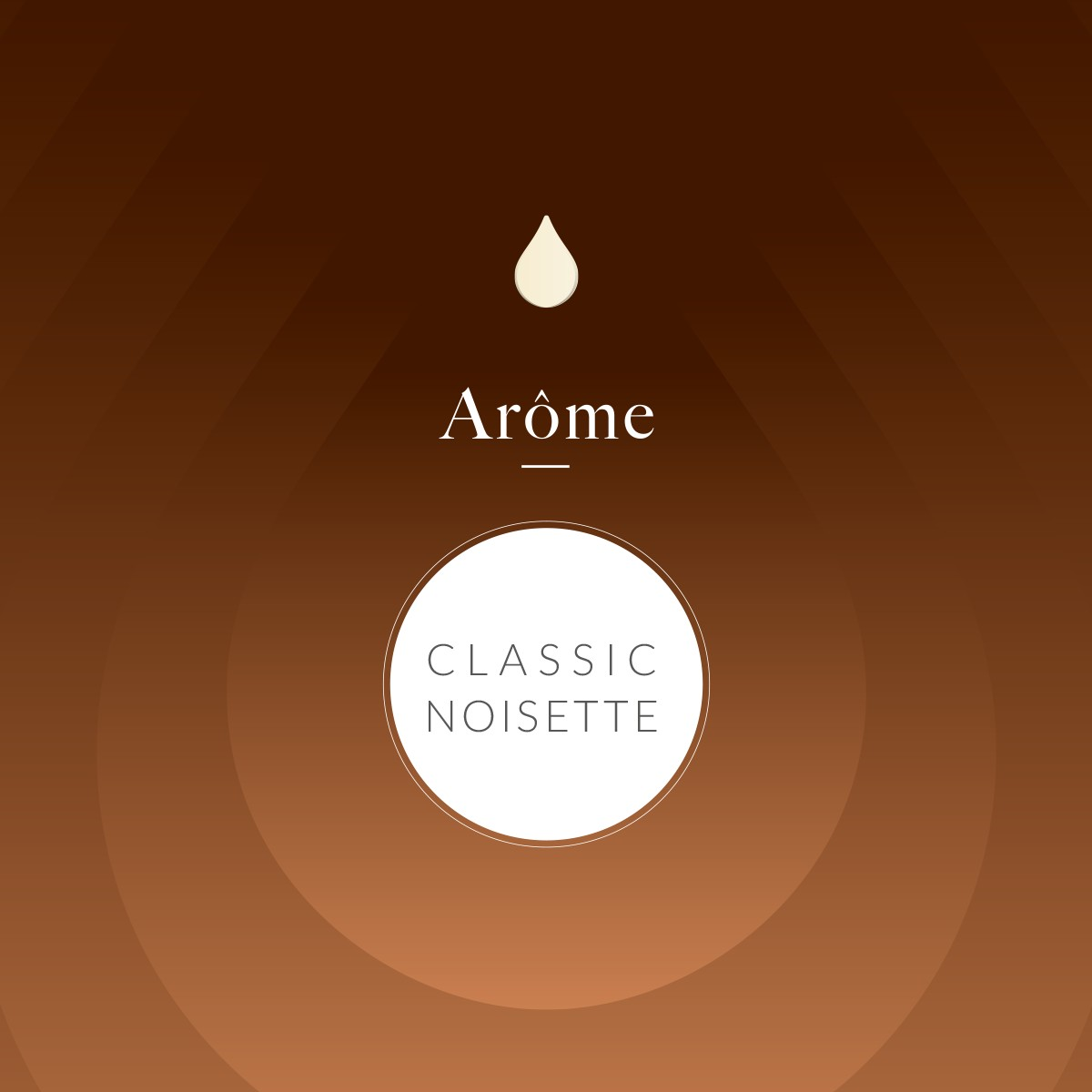Classic Noisette
