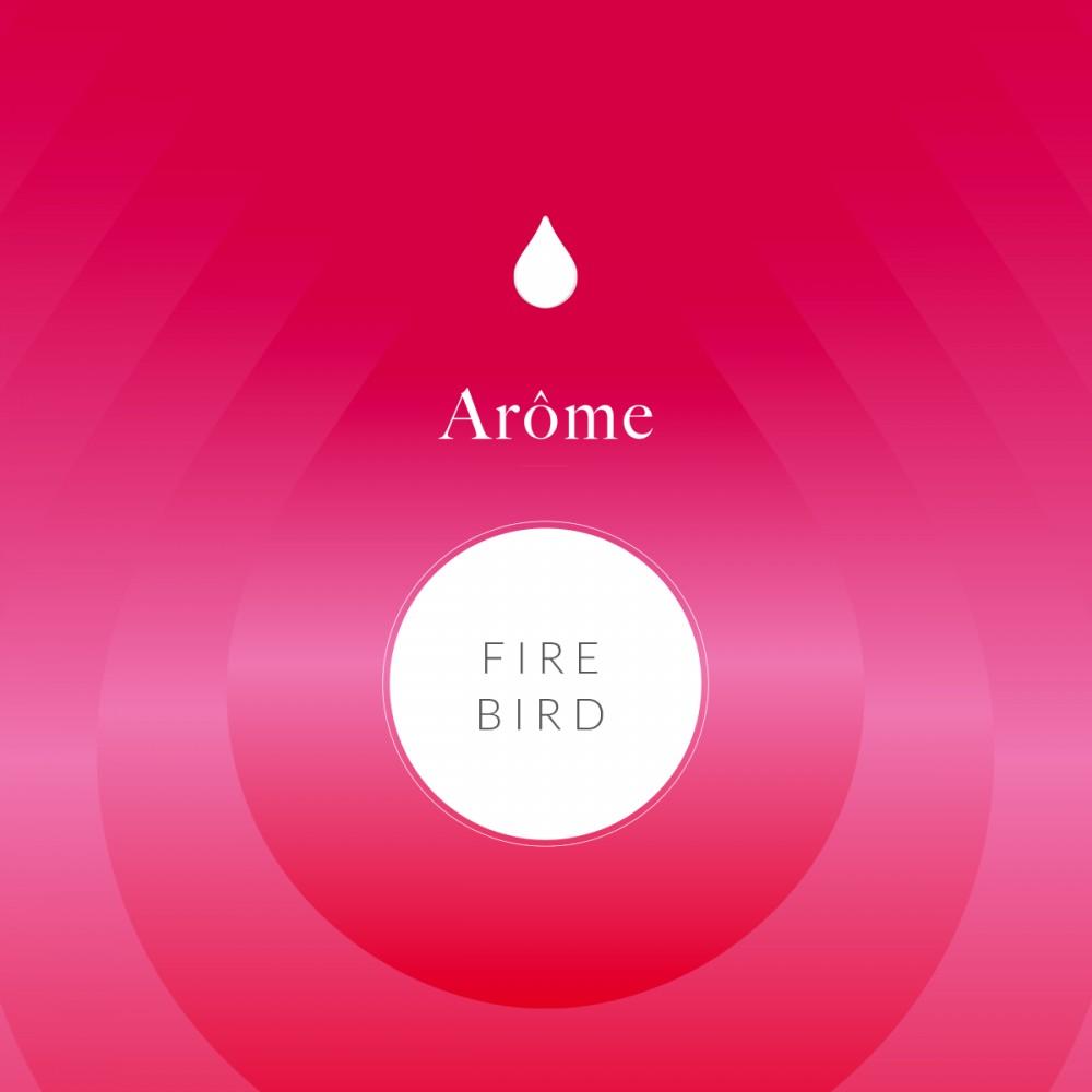 Arôme Alimentaire Fire Bird