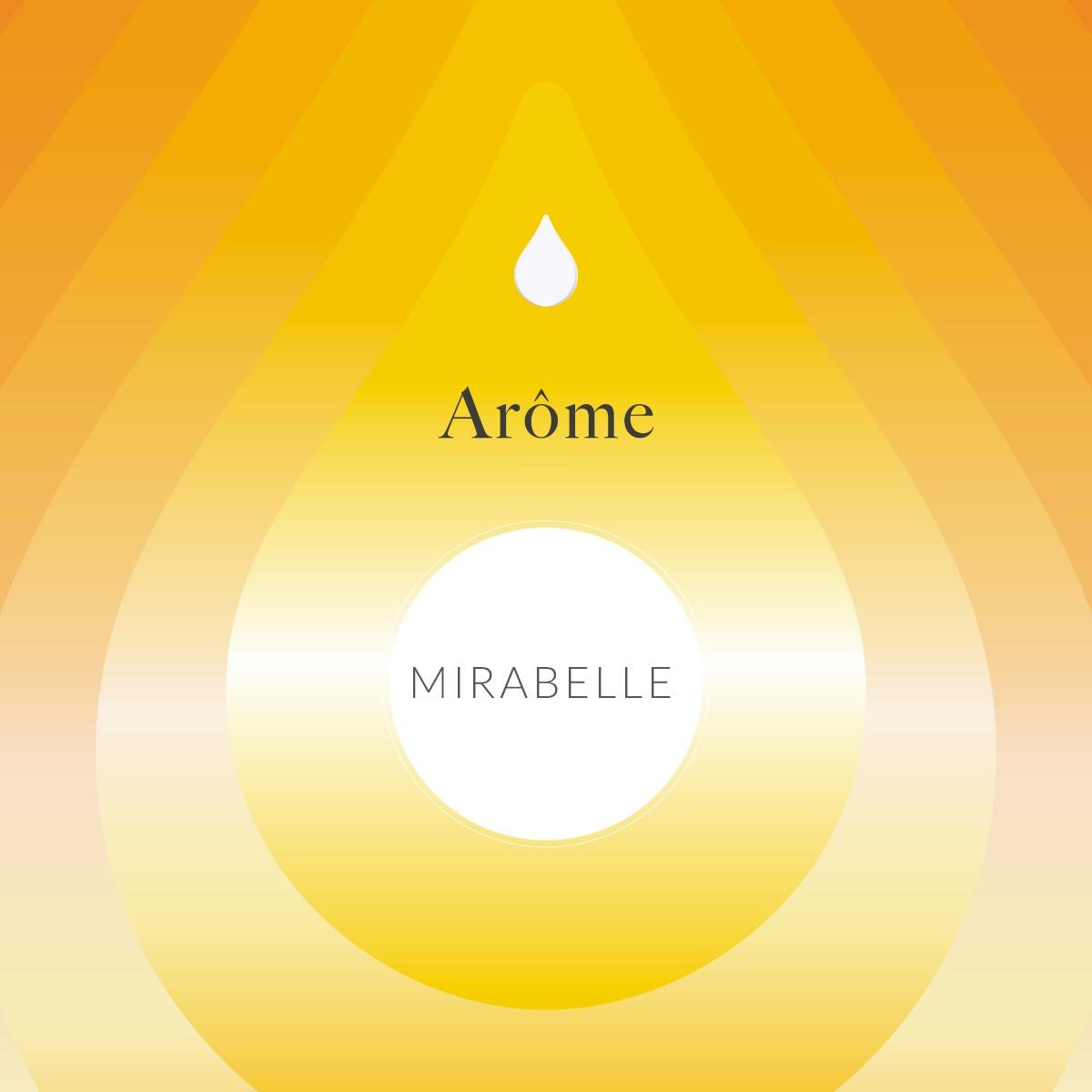 Arôme Melon Mirabelle
